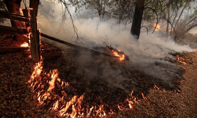 California fire death Come get Come and get me