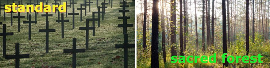 Instead of visiting cemeteries, mourners will be able to visit sacred forests