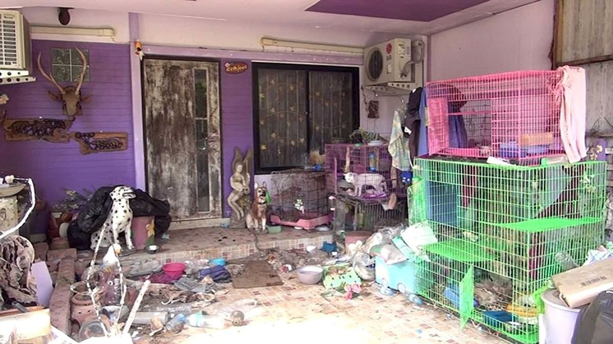 Pets left to die in seized home: official