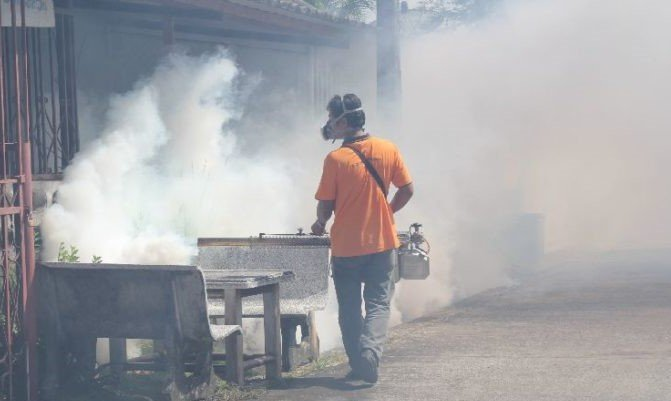 71 KILLED AS DENGUE DEATHS SPIKE. Dengue deaths among Thais are up over 30 percent from last year, the health ministry said Sunday