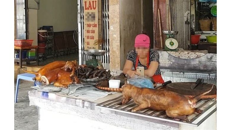Hanoi urges its citizens to stop eating dog meat