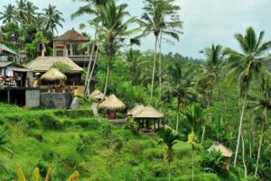 Indonesia could learn from Thailand in developing tourist