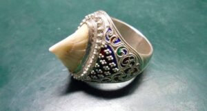 Owners told to report fishy jewellery. Owners of jewellery containing a dorsal fin from a bowmouth guitarfish (Rhina ancylostoma)