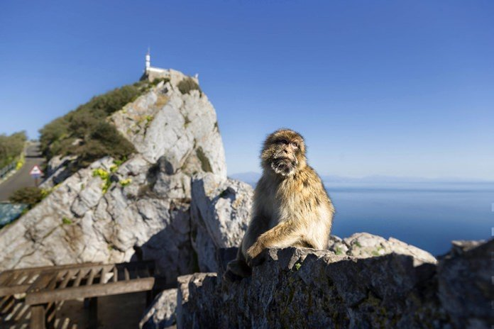 Brexit deal almost done, but Spain holds out over Gibraltar. Spain pushed Friday for a cast-iron guarantee of its say over the future of Gibraltar as a