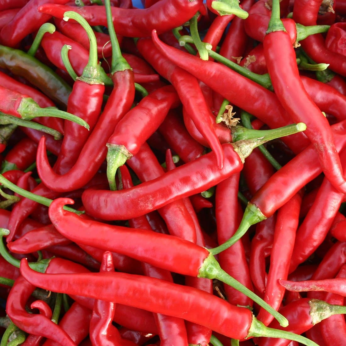 Police hunt mystery biker who 'randomly' tossed chilies into Mercedes