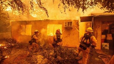 Rescue workers recover bodies in fire-hit California town. Paradise, United States - Rescue workers recovered multiple bodies on Saturday from