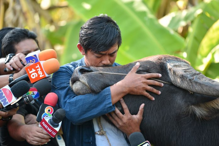 SUMMONED BY POLICE, FARMER BRIEFLY REUNITES