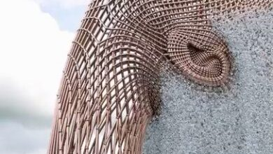 The fountain in Japan stunned the world by its design. FOR ART'S SAKEA Viral Fountain in Japan Is Not Real –A video showing a monumental head with a.