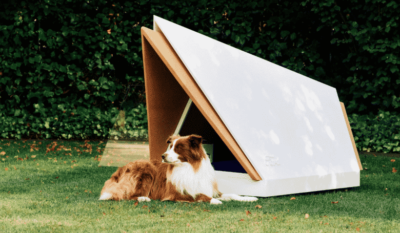 Noise-Cancelling Kennel Protects Your Pup From Fireworks Noise. Bonfire night has been and gone for another year, but it's far from over for the families