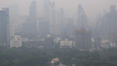 Bangkok pollution takes temporary break. Bangkok's air pollution eased significantly on Sunday morning, though the health threat posed by PM2.5 lingers.