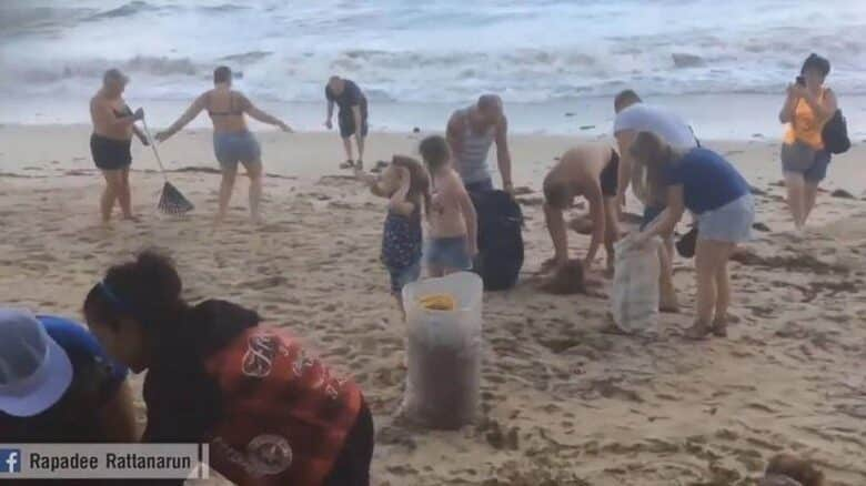 Foreign tourists help clear trash from Samui beaches. Foreign tourists on Monday gathered for the second day at a beach on Samui Island in Surat