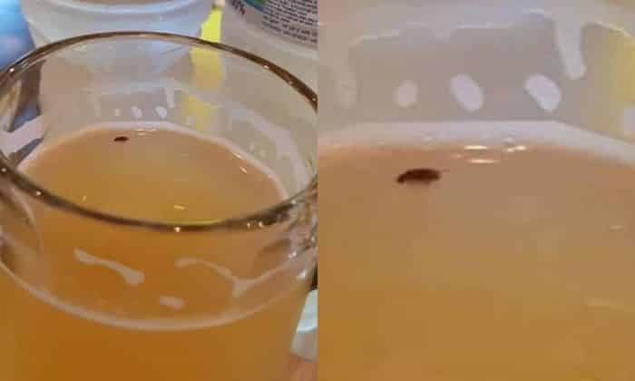 Restaurant takes no responsibility for cockroach floating in draft beer.