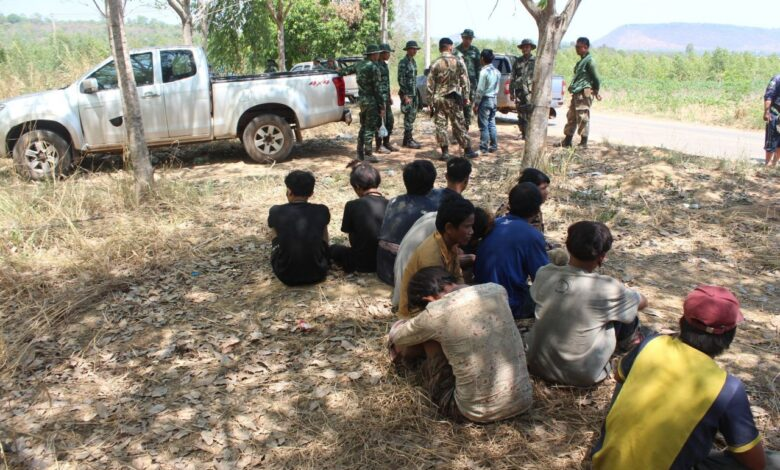12 undocumented Cambodians arrested in rubber plantation. Twelve Cambodians were arrested early on Sunday after they were suspected to have gathered at