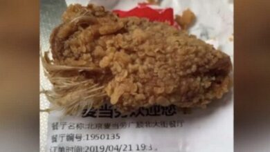 Chinese girl has nightmares after eating McDonald's chicken wings with feathers still on. A woman in Beijing got a nasty surprise on Sunday when the chicken