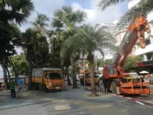 City hall beautifying Pattaya for coronation Decorative lights are being installed on Central Pattaya Road, Beach Road and 3rd Road as part of Pattaya