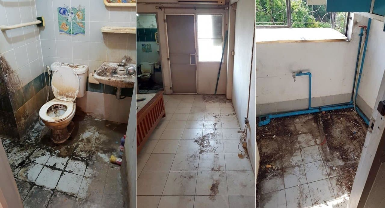Shocked landlady posts photos of apartment as left by tenant. A landlady has gone online to express her shock at the condition of her apartment after her