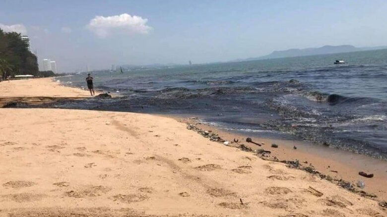 This is how Pattaya officials STOPPED black water beach pollution. Officials from Chon Buri Municipality says there is no source of wastewater found