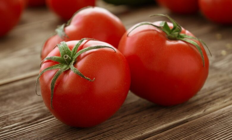 Tomatoes keep lung disease at bay. Tomatoes keep lung disease at bay. Adults who ate more than two tomatoes a day had a slower rate of natural lung function