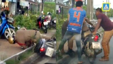 Video of 'drunk' policeman goes viral but boss says he is sick. A video clip of a policeman falling off a motorcycle on to a path by the side of a road has