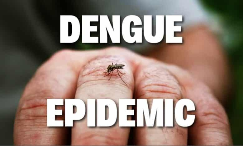Dengue fever EPIDEMIC is declared in Thailand. The Department of Disease Control on Friday announced a dengue haemorrhagic fever epidemic this