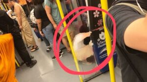 Tourist Urinates on Airport Link SkyTrain. A picture of a woman sitting and taking a pee-wee on a train in the Airport Link has gone viral online. The