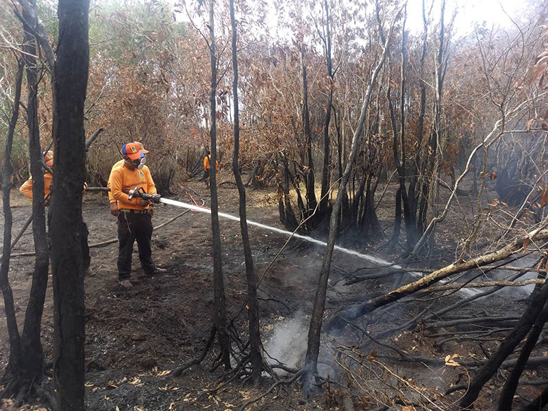 A forest ranger hoses a fire on Aug. 15, 2019 at Pa Phru Kuan Kreng.