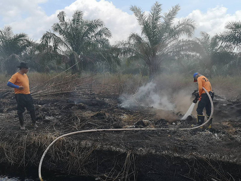 Forest rangers hose a fire on Aug. 12, 2019 at Pa Phru Kuan Kreng.