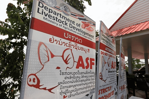 Thailand puts 24 provinces on alert against African swine fever