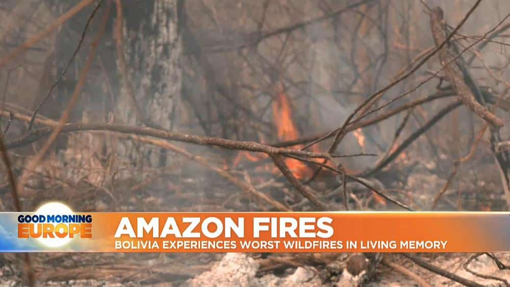 Amazon Fires: Bolivia experiences worst wildfires in living memory