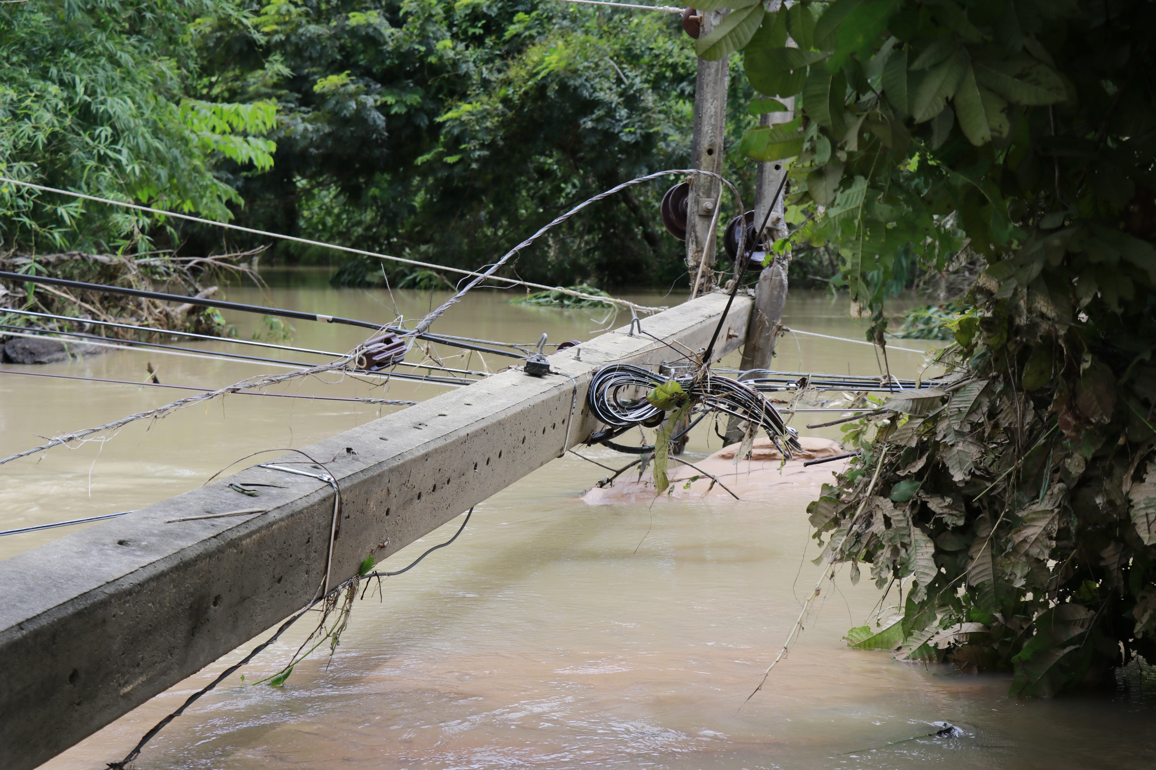 A utility pole in Amnat Charoen collapsed by strong currents on Sept. 2.