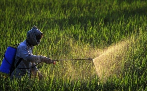 PM not committed to controlling use of three controversial herbicides