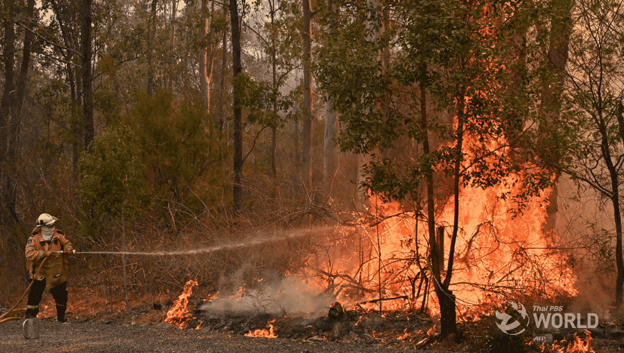 Australia bushfires leave three dead, at least 150 homes lost